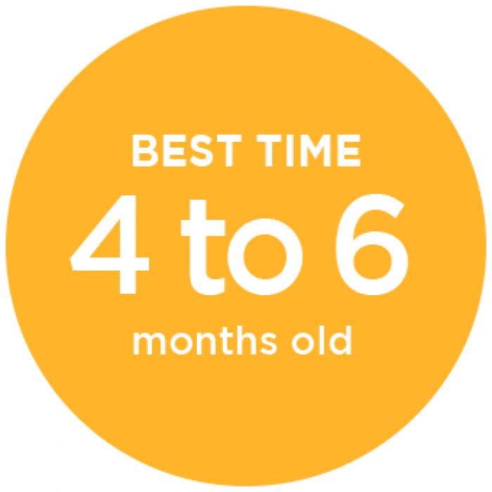 Best Time for CranioCap 4 to 6 Months Old