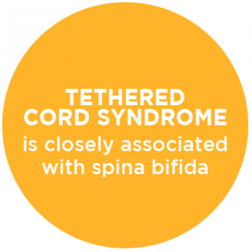 Tethered Cord Syndrome Associated with Spina Bifida