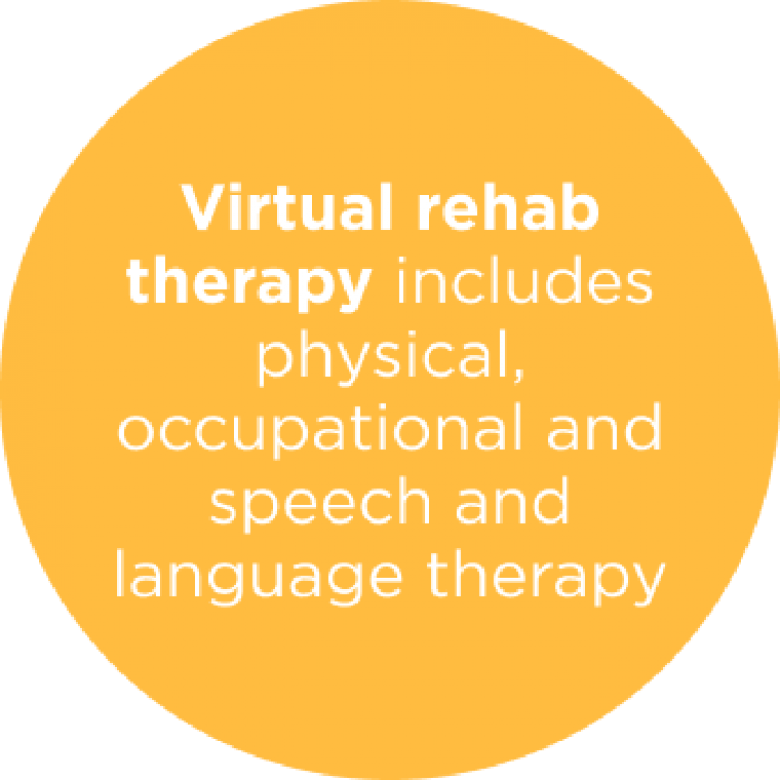 Virtual rehab therapy includes physical, occupations and speech and language therapy