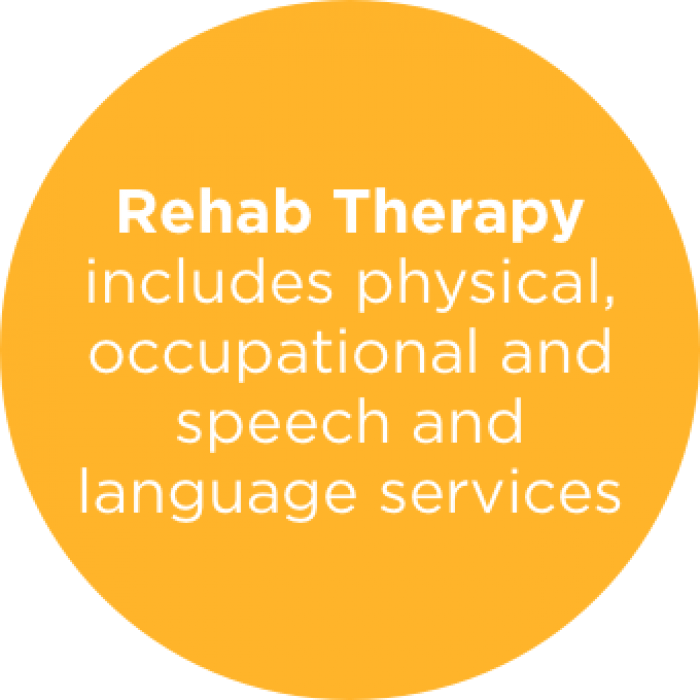 Rehab Therapy includes physical, occupational and speech and language services