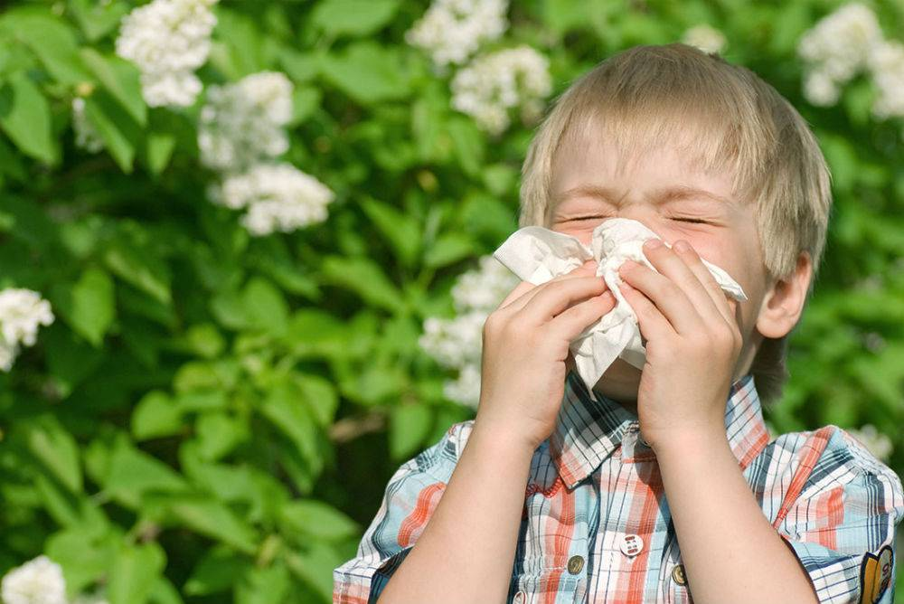 A boy sneezed outside near some flowers