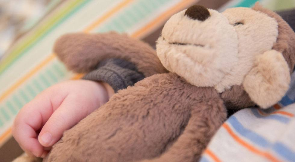 Donate Items to Patients | Gillette Children's Specialty