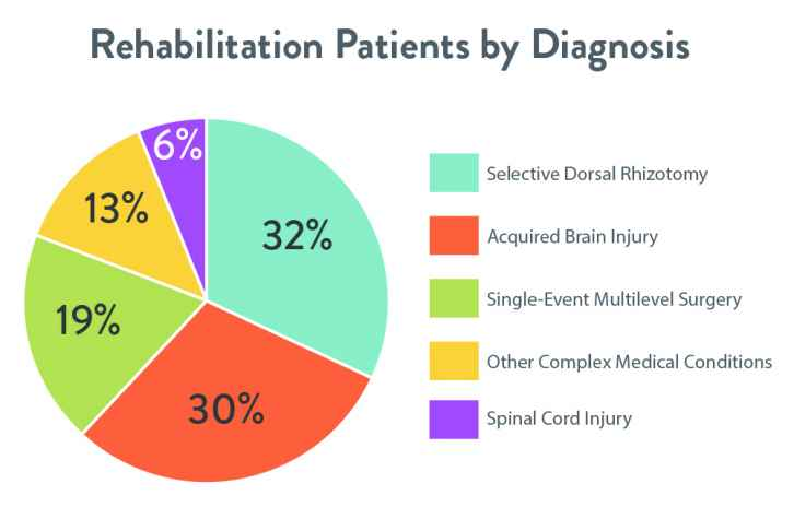 Rehabilitation patients by diagnosis at Gillette children's specialty healthcare